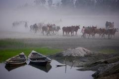 BOATS_BA_Sujan_Obsurver-Boats_Bangladesh