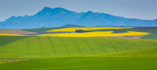 Overberg winters day